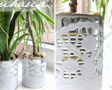 [diy] ich schenk meiner Pflanze ein neues Zuhause!
