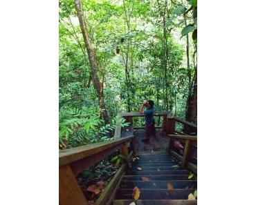 Der Nationalpark Pico Bonito – Honduras