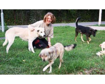 Aktivistin Angie über den Tierschutz und die Situation in Rumänien
