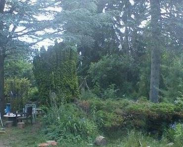 Garten wird Baugrundstück