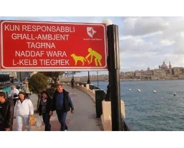 Malta: auf meinem Kopf hockt eine Qualle