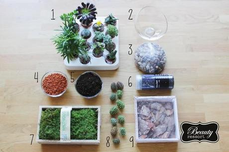 diy geschenke terrarium. Black Bedroom Furniture Sets. Home Design Ideas