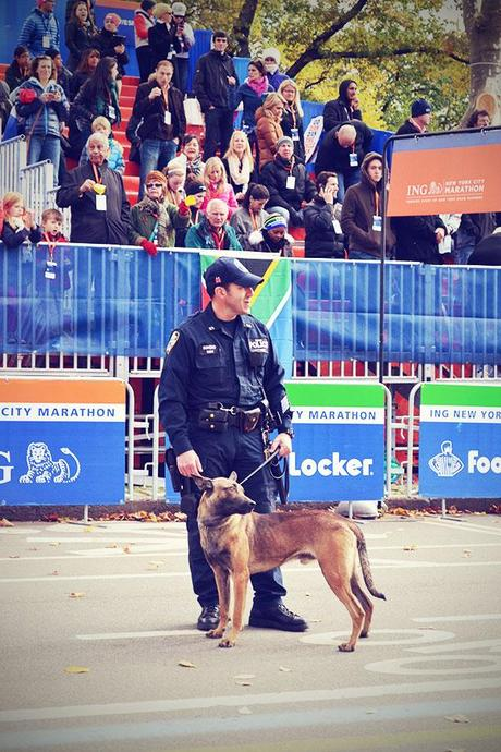 New York November 2013 Marathon Polizist Hund