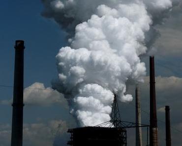 Brasilien: Stahlkocher Thyssen-Krupp erneut in der Kritik