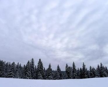 Die fatale Skispur vom Marchairuz