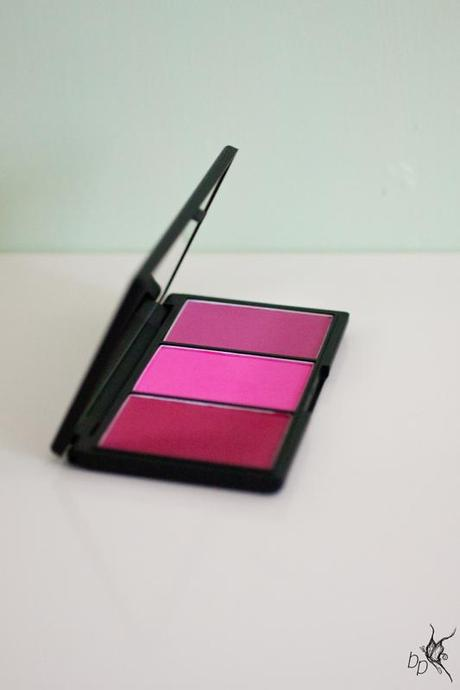 Sleek_Blush_by_3