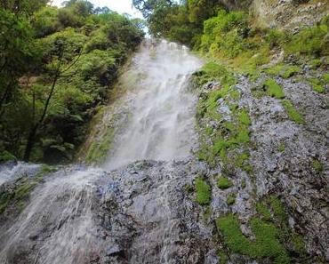 Traumhaftes Honduras, Teil 1 La Tigra Nationalpark