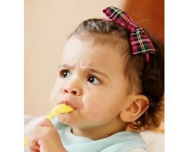 Babynahrung mal genauer unter der Lupe!
