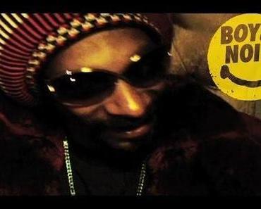Boys Noize feat. Snoop Dogg – Got It [Video]