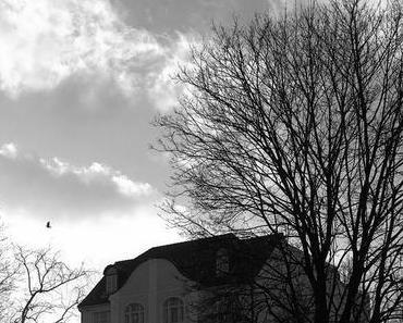 12tel Blick | Februar 2014