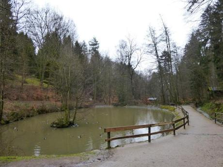 Odenwald 3