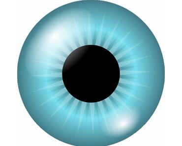 Das menschliche Auge – Anatomie und Sehfunktion