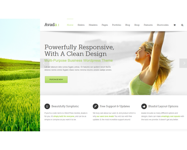 WordPress Themes 2014