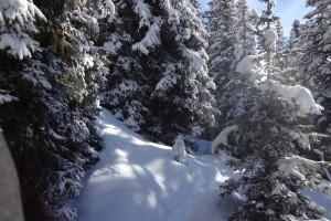 Unsere Winterspiele auf dem Faltegartenköpfl