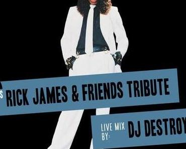 Rick James & Friends Tribute Mix (free download)