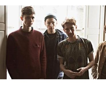 Glass Animals: Bestnoten