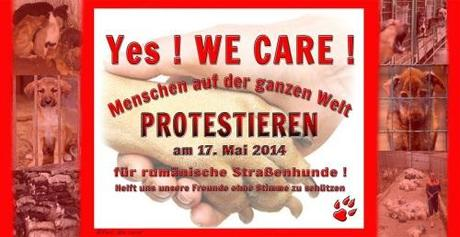 Yes We Care 17 May 2014 international protest