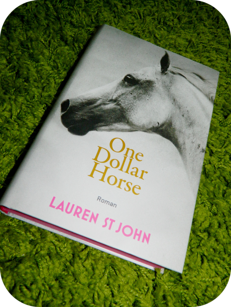 Lauren St. John- One Dollar Horse (Rezension)