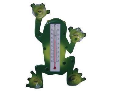 Der Frosch sagt: Der Sommer hat begonnen