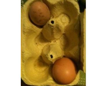 Die Antwort, Genossin, weiß ganz allein das Huhn …