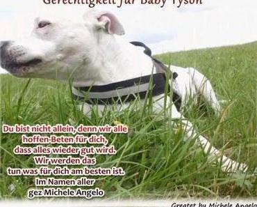 Gerechtigkeit für Baby Tyson - Wir geben die Hoffnung nicht auf !