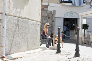 Sind Hunde in Cefalu – Sizilien willkommen?