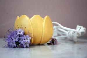 Aromatherapie bei Stress & Burnout – Ein wirksamer Helfer