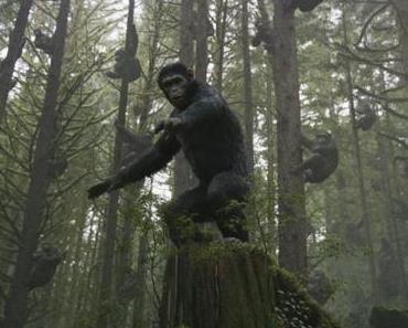 """""""Planet der Affen – Revolution"""" von Matt Reeves"""