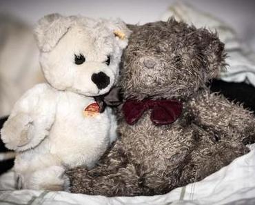 Teddybär-Tag – der amerikanische Teddy Bear Day