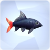 Red-Tailed Black Shark in The Sims 4
