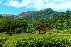 El Valle de Antón – Leben im Vulkankrater