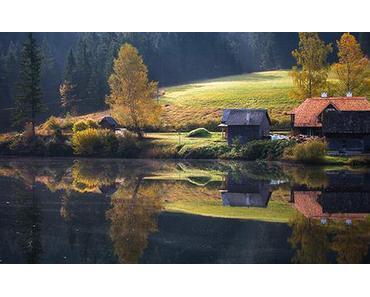 Weisenblasen am Hubertussee in der Walstern 2014 – Fotos