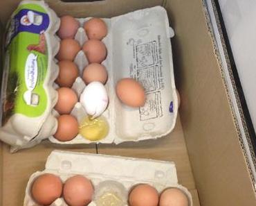 Eier-Schlacht: Eine hochgradige Verschwendung!