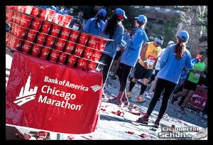 EISWUERFELIMSCHUH - CHICAGO MARATHON 2014 PART I I - Chicago Marathon 2014 (156)
