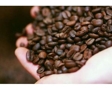 Sieben kuriose Kaffee-Fakten, die mir ein Röstmeister verriet