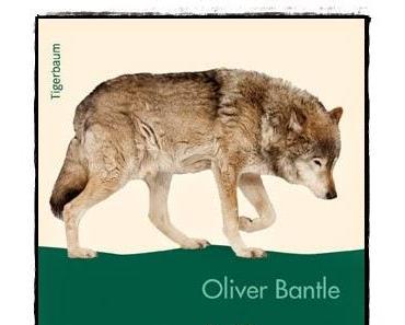 [Rezension] Wolfs letzter Tag (Oliver Bantle)