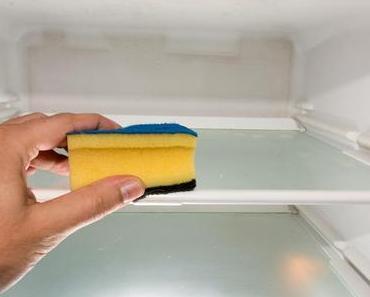 Putz-Deinen-Kühlschrank-Tag – der amerikanische Clean Out Your Refrigerator Day