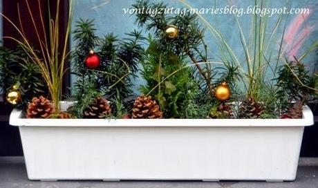 meine weihnachtlichen blumenkisterln. Black Bedroom Furniture Sets. Home Design Ideas
