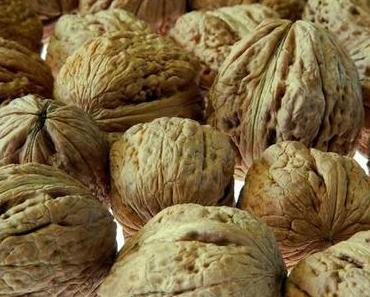 Die heilende Wirkung der Walnuss / Health benefits for walnuts