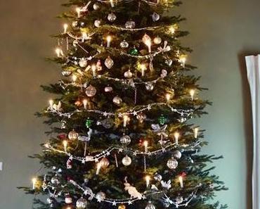 4 Meter Licht und Glanz - mein Weihnachtsbaum!