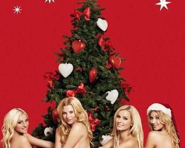 Keine Tiere unterm Weihnachtsbaum! + zwei tolle Alternativen