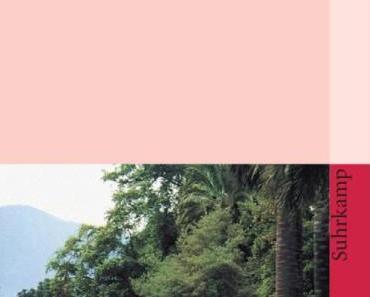 Isabel Allende: Das Geisterhaus