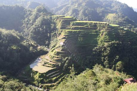 Travel Diary Philippines Banaue rice terraces 2