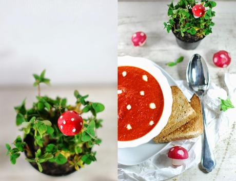{Rezept} Happy new Year mit Fliegenpilzsuppe