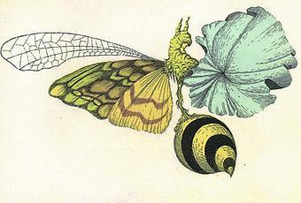 134 besten FemDom Illustration Bilder auf Pinterest
