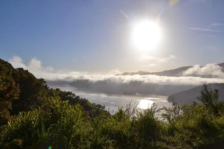 {Neues aus NZ} Queen Charlotte Drive/Picton BILDERFLUT