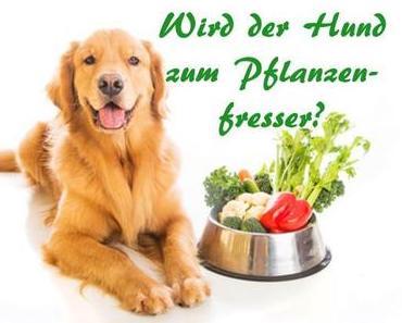 Wird der Hund zum Pflanzenfresser?