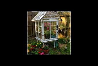 alte fenster neue mini gew chsh user f r balkon und garten. Black Bedroom Furniture Sets. Home Design Ideas