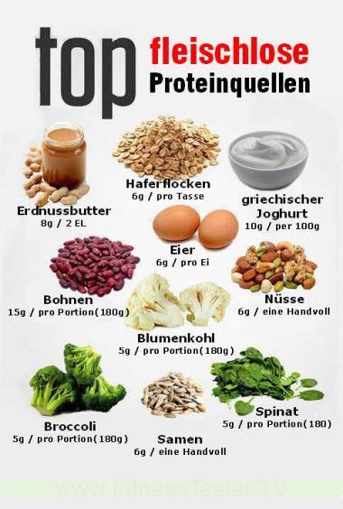 Muskelaufbau Proteine
