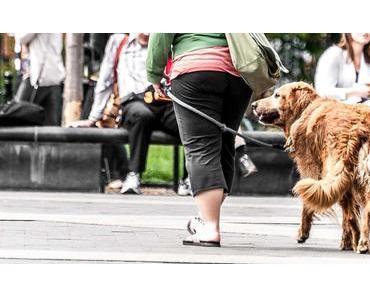Gassi-Gehen-Tag – der amerikanische Walking the Dog Day